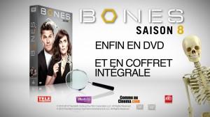 bones03